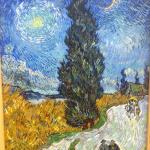 Landweg in de Provence bij nacht door Vincent van Gogh